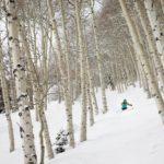 Aspen Snowmass Tree Skiing