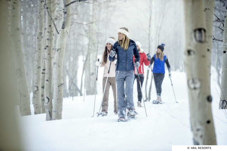 Group of young female skiers go cross country skiing
