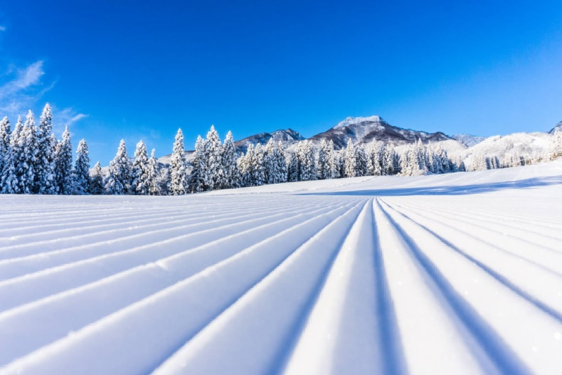 Groomed lines of fresh snow in Japan
