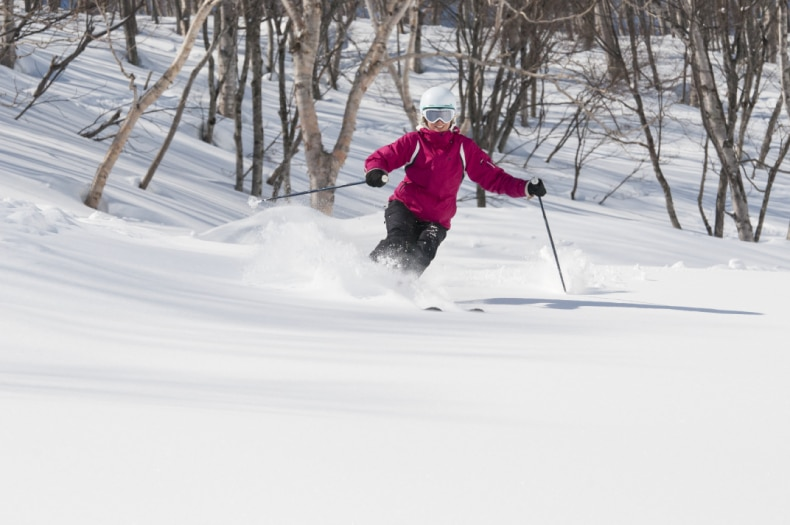 Myoko Ski Area Powder Trees SkiBookings.com