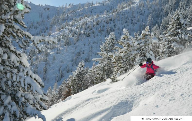 Panorama Skiing Powder SkiBookings.com