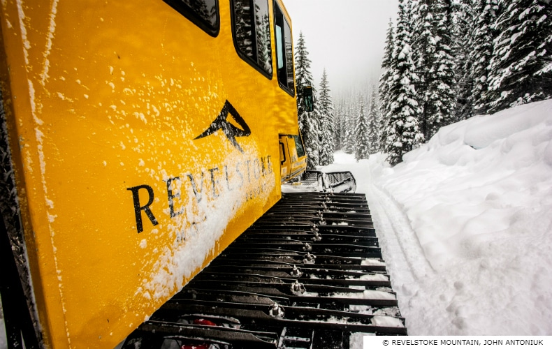 Revelstoke Mountain Cat Skiing SkiBookings.com