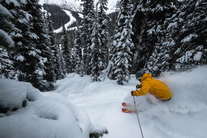 Banff Sunshine Powder Skiing SkiBookings.com