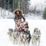 Park City Mountain Resort Dog Sledding Credit Vail Resorts