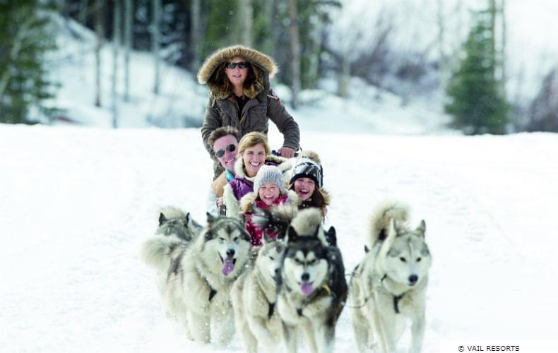 Family sledding with huskies