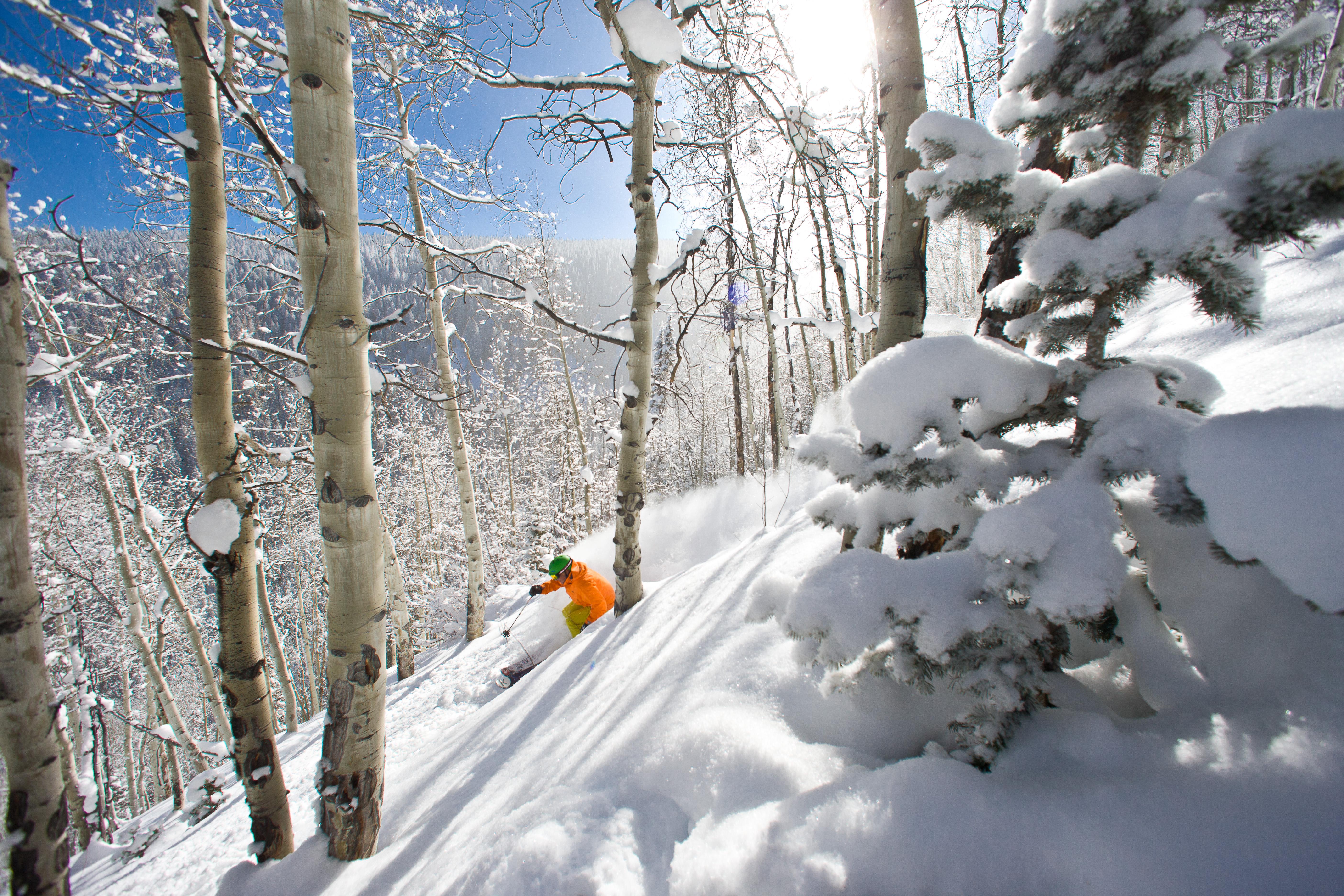 Beaver Creek Ski Resort SkiBookings.com